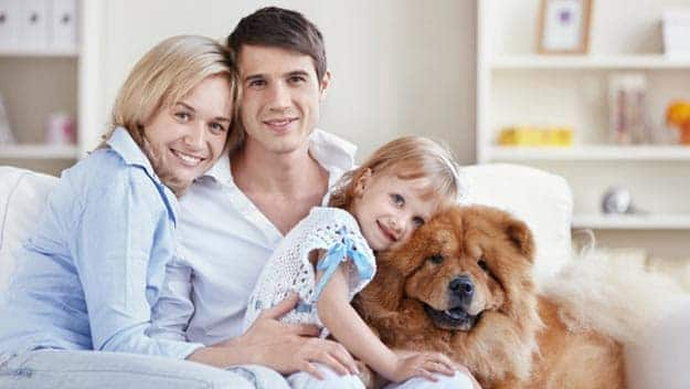 Wills & Trusts dog-young-family Direct Wills Godalming